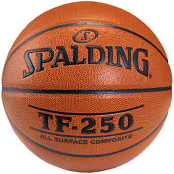 SPALDING TF-250 IN/OUT (SIZE 5)